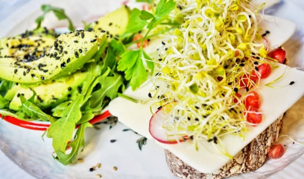Avocado-breakfast_teaser